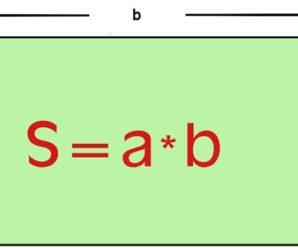площадь прямоугольника формула
