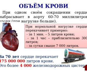 Объем сердечной крови
