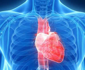 сердечный выброс картинка