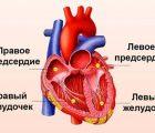 Онлайн калькулятор – Индекс работы правого желудочка при одном сокращении
